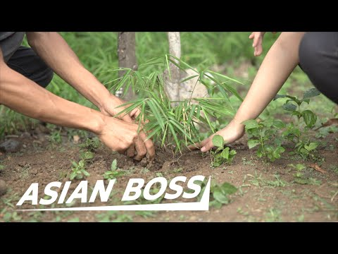 Planting 1 Billion Bamboo Saplings to Save the Philippines | EVERYDAY BOSSES #37