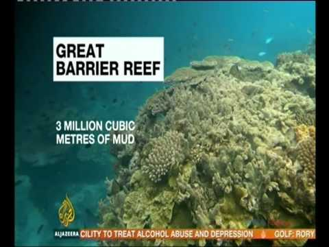 Plan to dump sediment on Great Barrier Reef approved