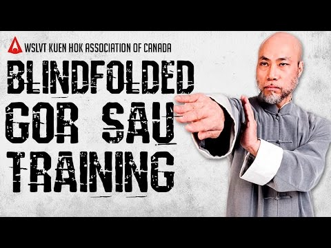 Sifu Cliff Au Yeung | WSL Ving Tsun | Blindfold Gor Sau Training
