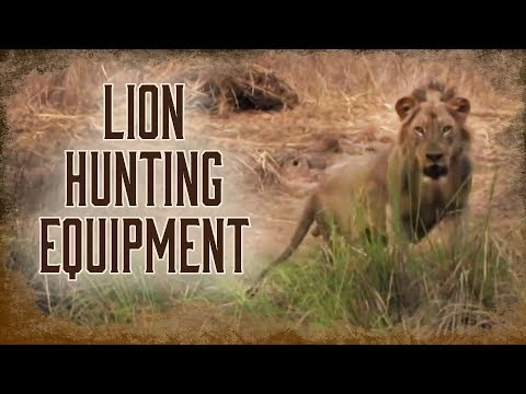Equipment Needed For Lion Hunting | 3