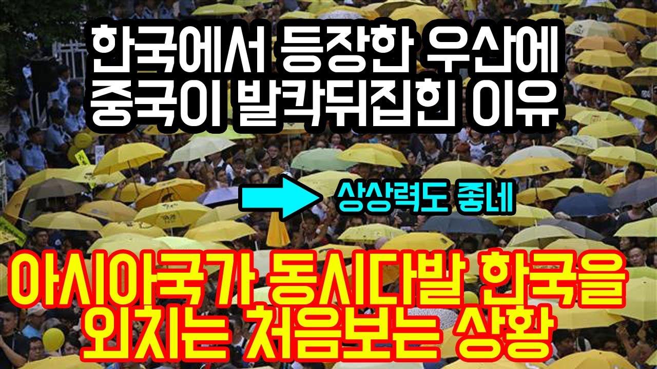"""현재 한국에서 등장한 우산에 중국이 발칵뒤집힌 이유 """"아시아 국가들 동시다발로 한국을 외치는 처음보는 현상"""""""