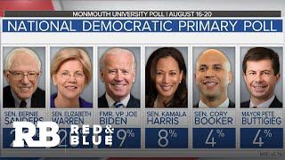 Polls Show Biden, Sanders And Warren At Top Of 2020 Democratic Field