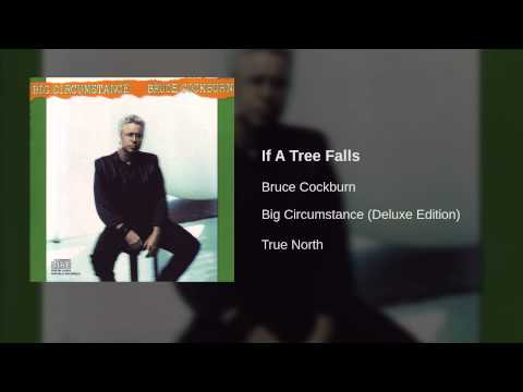 Bruce Cockburn - If A Tree Falls
