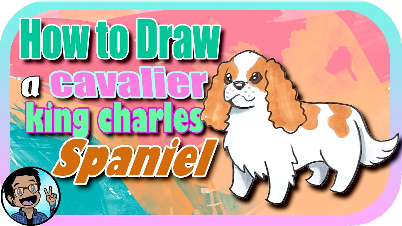 How To Draw A Cavalier King Charles Spaniel