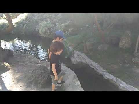 Ezra's leap of faith at Huntington gardens