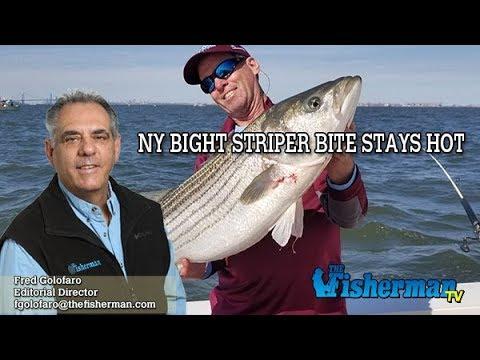 April 25, 2019 Long Island Metro Fishing Report with Fred Golofaro
