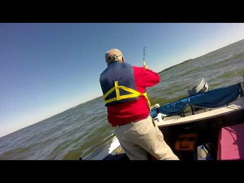 Chesapeake Bay Rockfishing 19 Oct 2017