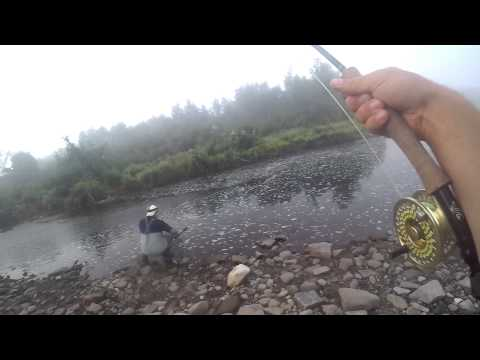 Hooking and Landing a Large Atlantic Salmon in the MIramichi