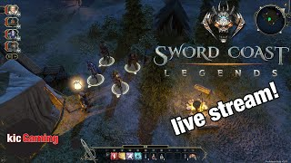 Sword Coast Legends gameplay  -- First hour of the main story campaign (wizard) -- Let