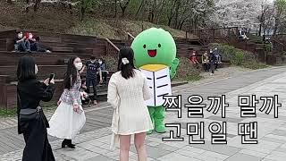 북서울꿈의 숲에 나타난 강북이?!