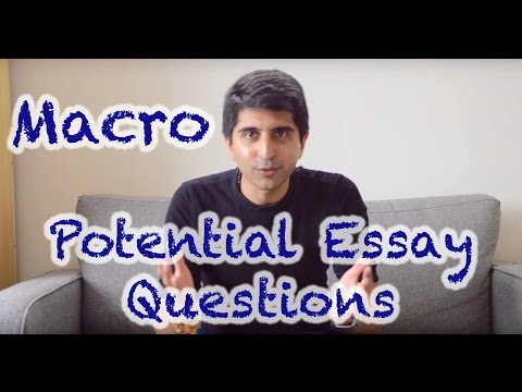externalities of environmental pollution essay