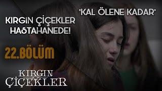 Kal Ölene Kadar - Tuna Velibaşoğlu - Kırgın Çiçekler 22.Bölüm Klip