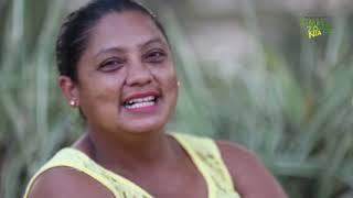 Expedição Amazônia + Paragominas