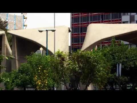 A Prowl In Empty University of Tehran