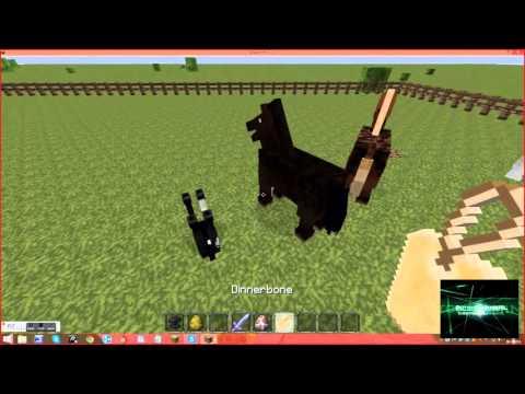 Minecraft hoe zet je dieren op zijn kop youtube - Hoe sluit je een pergola ...