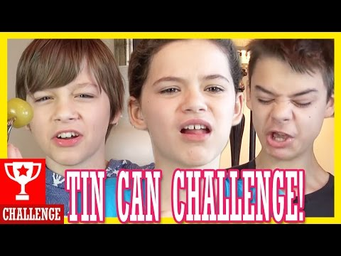 THE TIN CAN CHALLENGE!  |  KITTIESMAMA