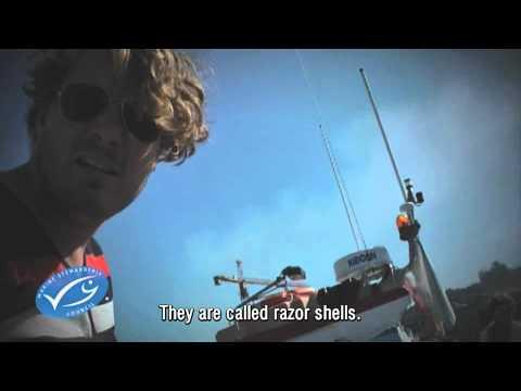 Bezoek Wereldgasten aan Marine Stewardship Council (MSC)