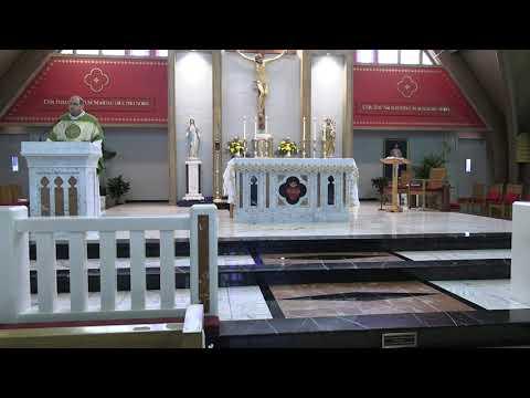 Daily Mass 11/19/20
