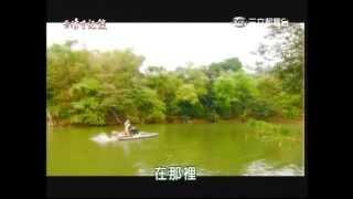 台灣亞馬遜河的淡水鯨魚