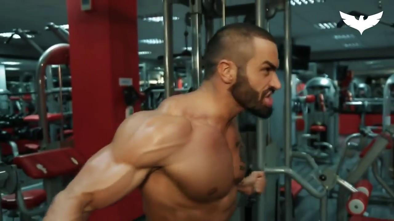 Chest Workout - Lazar Angelov ????