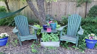 Garden Tour June 2019 - peonies, flowers and texture.