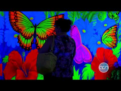 Debi Cable's 3D Blacklight Experience   America's Community Network