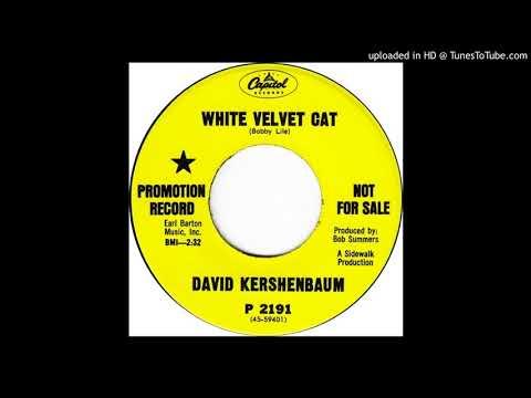 David Kershenbaum - White Velvet Cat