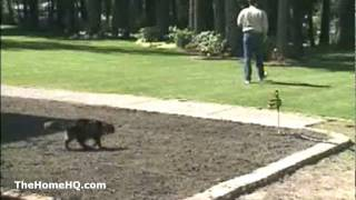 Visit: http://thehomehq.com/contech-scarecrow-sprinkler/ This video...