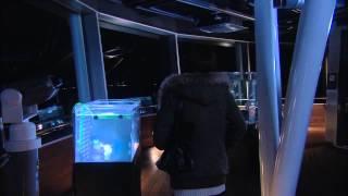fan made music video of the 2010 japanese drama 'nagareboshi' (shoo...