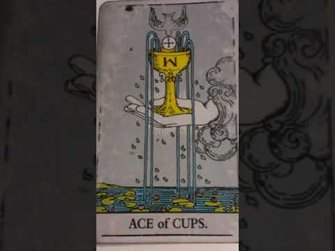 The Ace of Cups as Feelings in a Love Reading