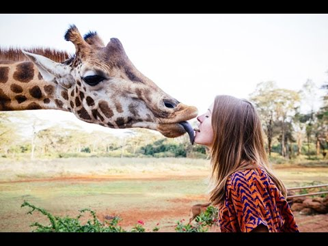 10 Facts About Giraffe AMAZING FACTS 2016 - YouTube
