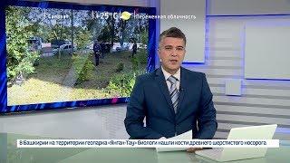 Вести-24. Башкортостан – 03.07.19