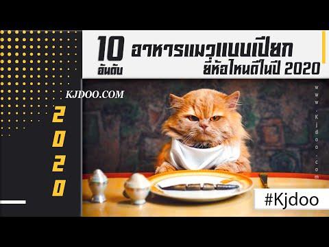 อาหารแมวแบบเปียก 10 อันดับ  ยี่ห้อไหนดี ในปี 2020 มีแร่ธาตุนานาชนิด ดีต่อร่างกาย