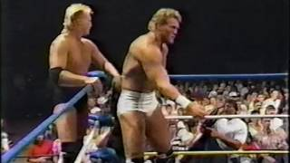 Skyscrapers vs. George South & Cougar Jay [1989-07-15]