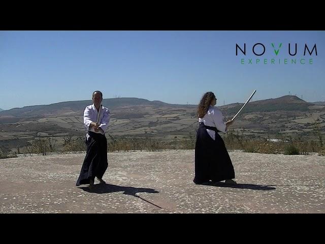 02 Ni no suburi - Aikido Novum Experience - Ken suburi nanahon -合気道-  二の素振り- 剣素振り七本