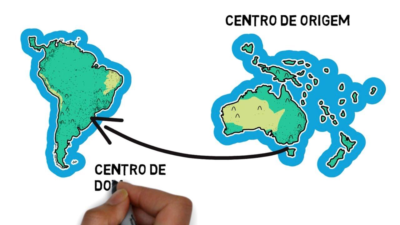 Centros de origem, diversidade, domesticação e bancos de germoplasma