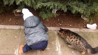 Mahallemizdeki kediler çok acıkmış. Berat minik elleriyle kedileri besledi.