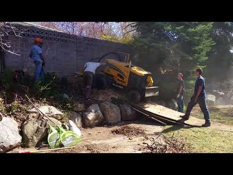 Tough Stump Grinding Job 3