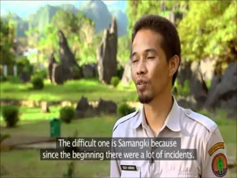 Voices of Forests Sulawesi Part I