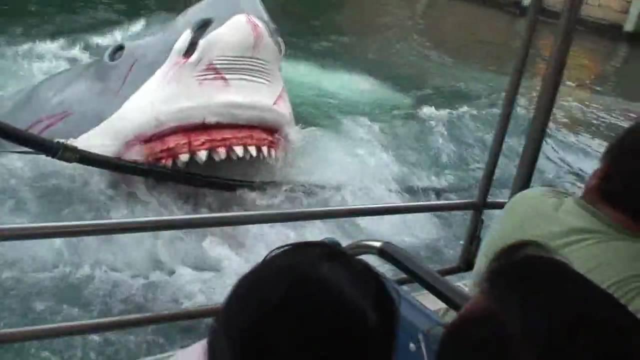 Dog Attacks Shark - YouTube