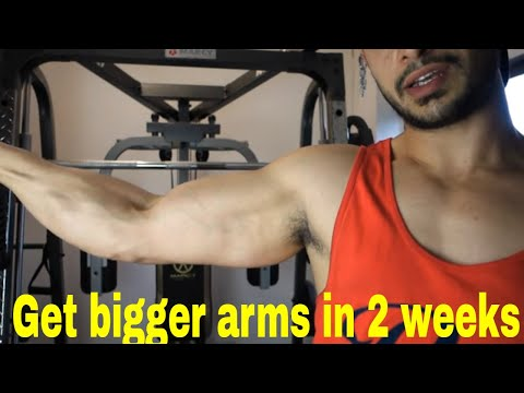 200 BICEP CURLS A DAY FOR 2 WEEKS CHALLENGE RESULTS
