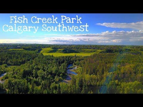 Flight over the Fish Creek Park - Calgary, Alberta - Canada