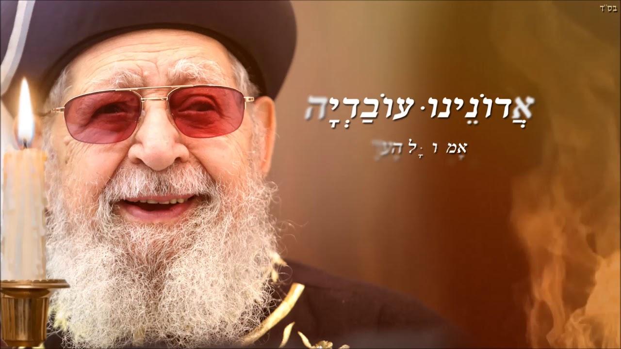 """אבי בן ישראל - ואמרו כל העדה : """"אדוננו עובדיה"""""""