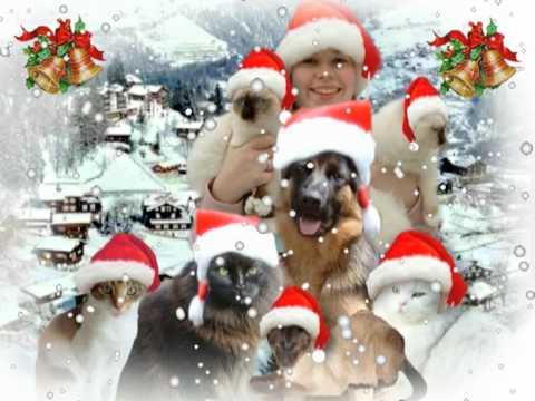 Kerst Kattenmov YouTube