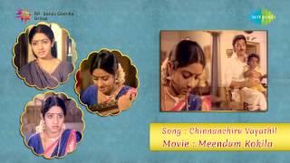 Meendum Kokila | Chinna Chiru Vayathil song