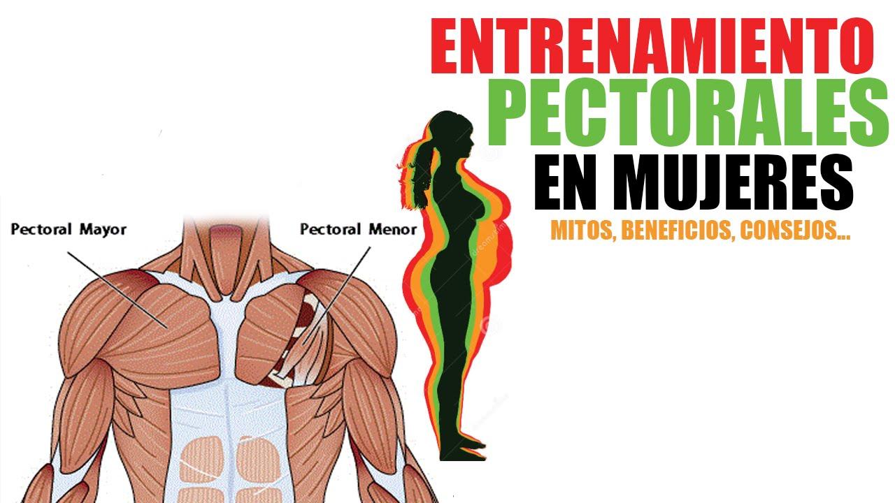 ENTRENAMIENTO DE PECTORAL EN MUJERES - [BENEFICIOS, MITOS, CONSEJOS ...