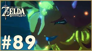 Zelda: Breath Of The Wild - Little Bird (89)