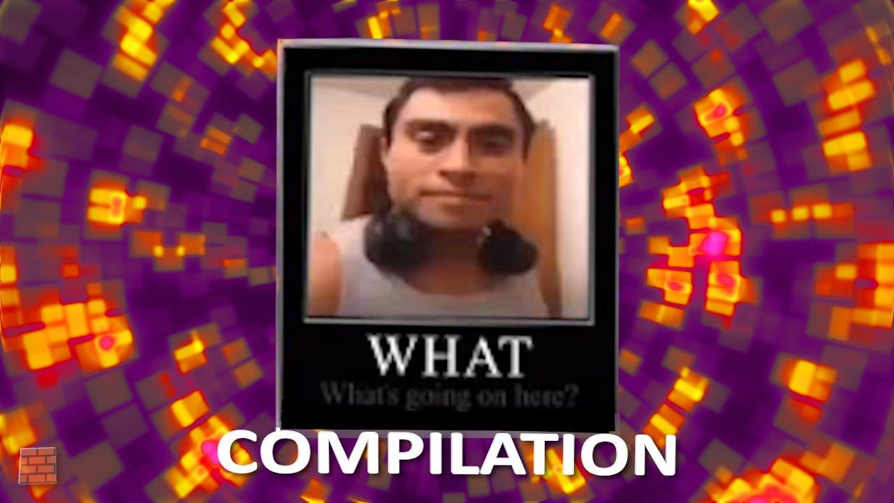 Download An Actual Compilation Of Sanctuary Guardian Memes
