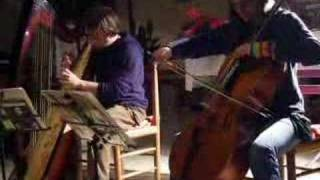 Blusker Duo celtic Harp & Cello