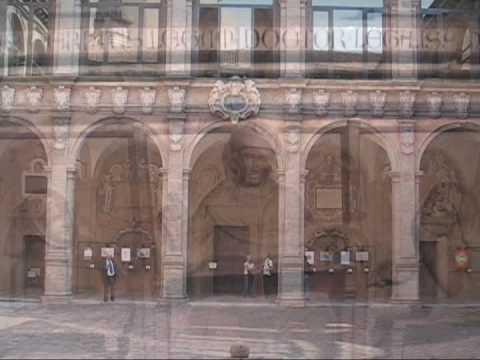 Loyola International LLM in Bologna